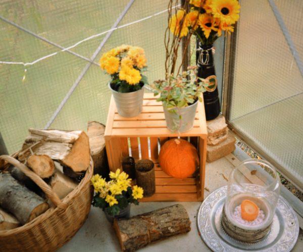 herbstdekoration mit pflanzen und k rbissen krimskramsblog. Black Bedroom Furniture Sets. Home Design Ideas